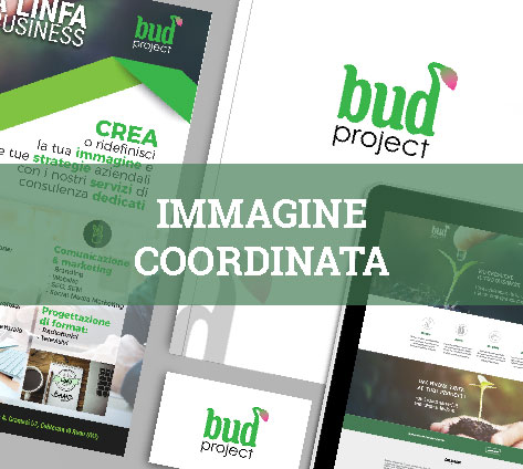 immagine coordinata bud project