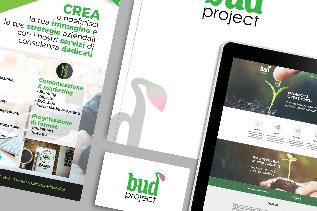 immagine Coordinata budproject